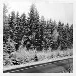 Neråt landet var det vinter!