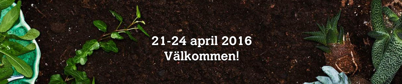 WALLENRUDS FAVORITER PÅ NORDISKA TRÄDGÅRDAR