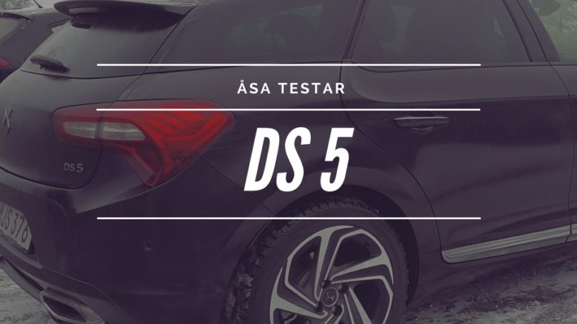 Wallenrud testar – DS5  