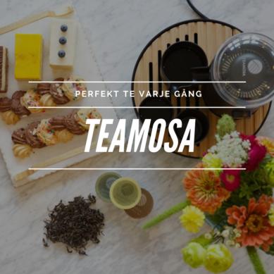 Perfekt te varje gång med Teamosa från Kickstarter