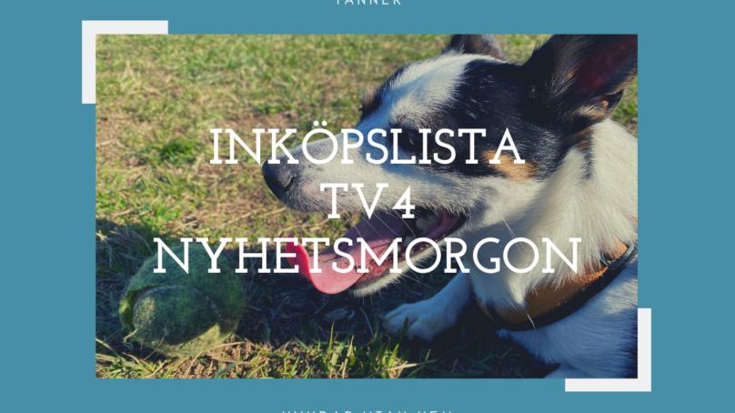 Inköpslista TV4 Nyhetsmorgon – Hundprylar